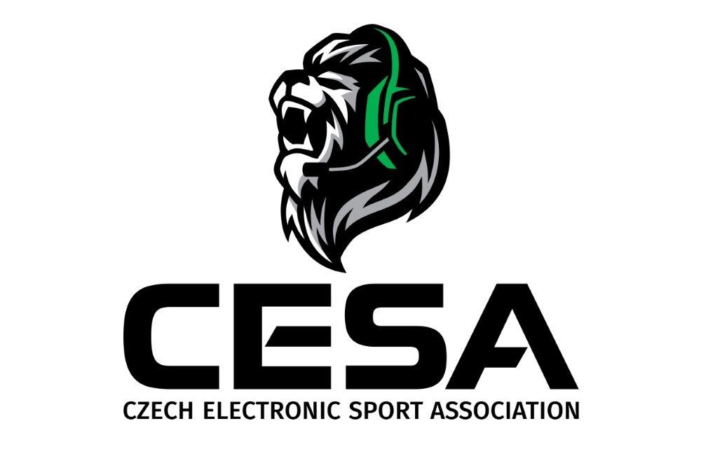 Petice chce zařadit esport na úroveň klasických sportů